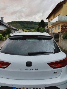 Leon7.jpg